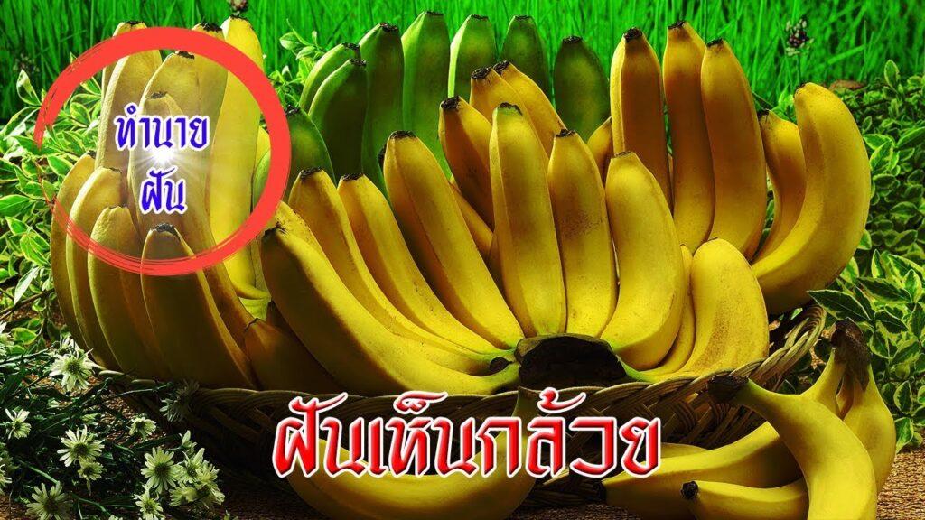 ทำนายฝัน ฝันเห็นกล้วย เลขเด็ด ฝันเห็นกล้วย แม่นๆ